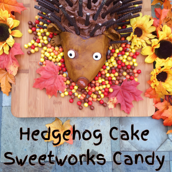 hedgehog-cake-sweetworks1